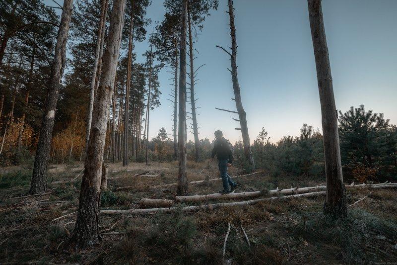 """украина, коростышев, лес, внутренняя, тишина, осознанность, гармония, любовь, жизнь, Самоисследование """"Кто я?""""photo preview"""