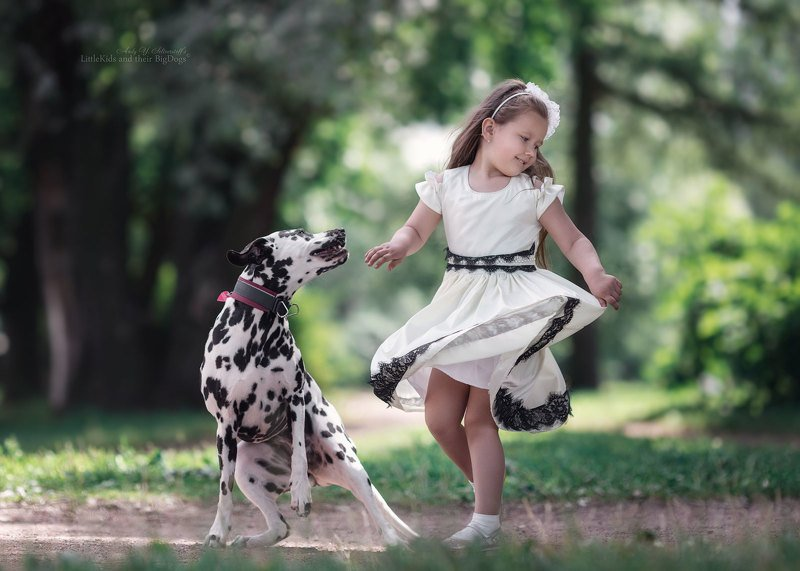 National Dalmatian Dancephoto preview
