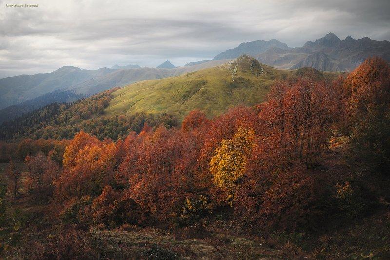 абхазия, горы, оссень, сентябрь, пасмурно, перевал пыв Горная Абхазияphoto preview
