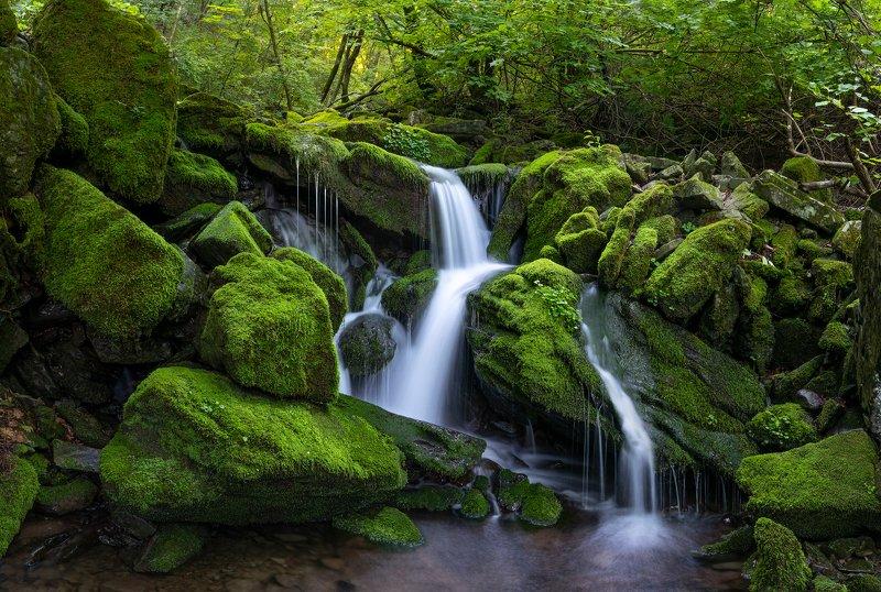 forest, summer, place, korea, waterfalls, moss, light Jangjeon mossfallsphoto preview