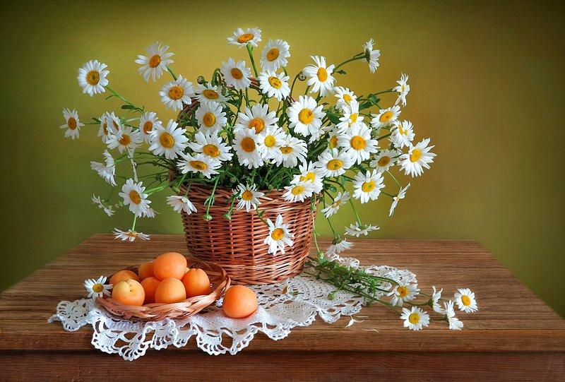 натюрморт,ромашки,корзина,абрикосы Цветут ромашкиphoto preview
