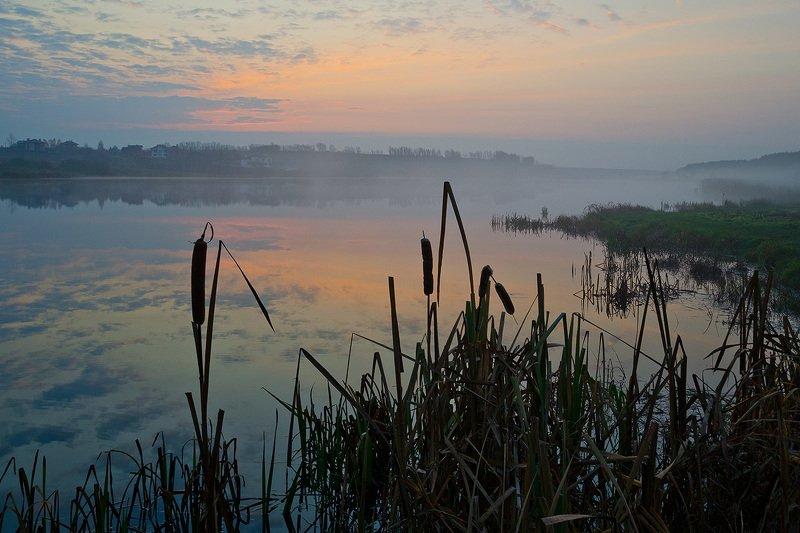 утро, туман, архангельское Рассвет наступаетphoto preview