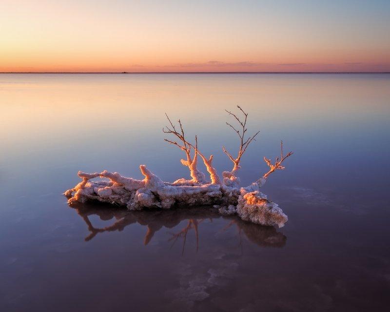 крым, розовое озеро, сасык, сасык-сиваш, евпатория, соленое озеро, соль, кристаллы соли, закат, вечерний пейзаж, лето Кристаллы розового озераphoto preview