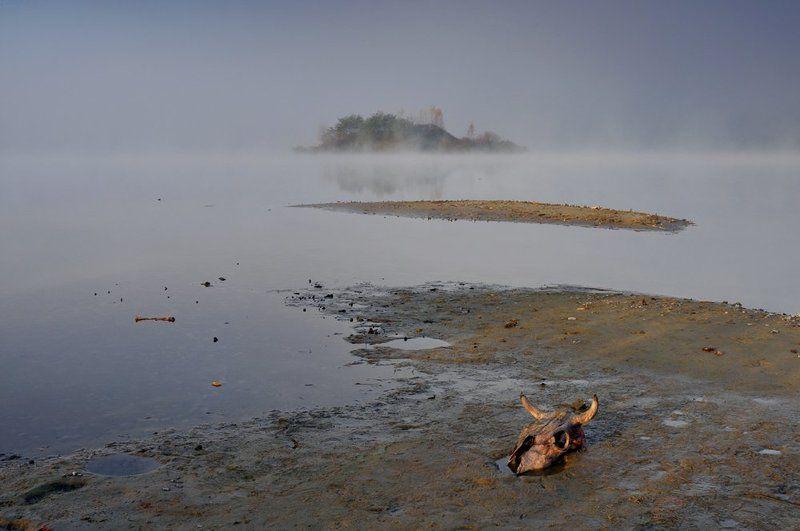 пейзаж, природа ***photo preview