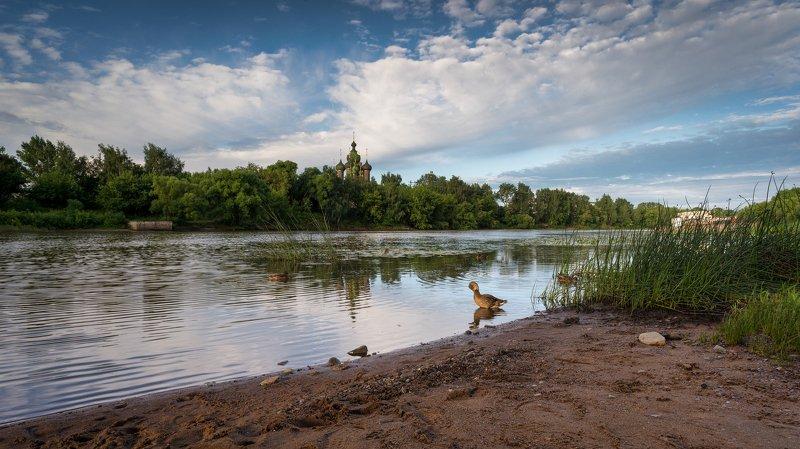 ярославль, храм, иоанна_предтечи, река, которосль, утки Утренний моционphoto preview