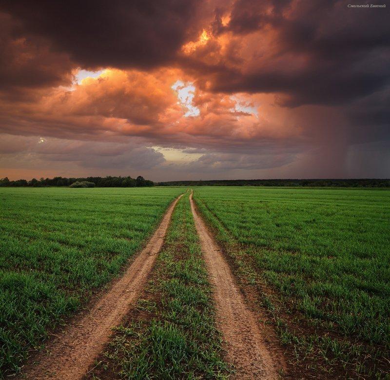 шторм, гроза, закат, май, поле, дорога. После майской грозыphoto preview