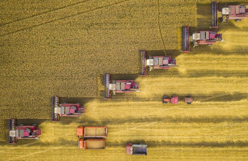 Битва за урожайphoto preview