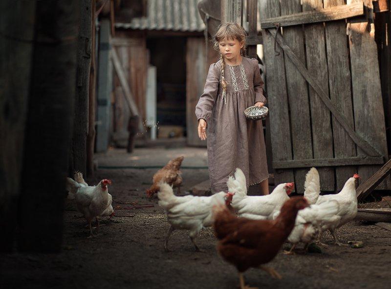 куры, девочка, курятник, лето, деревня, каникулы, земля в курятникеphoto preview