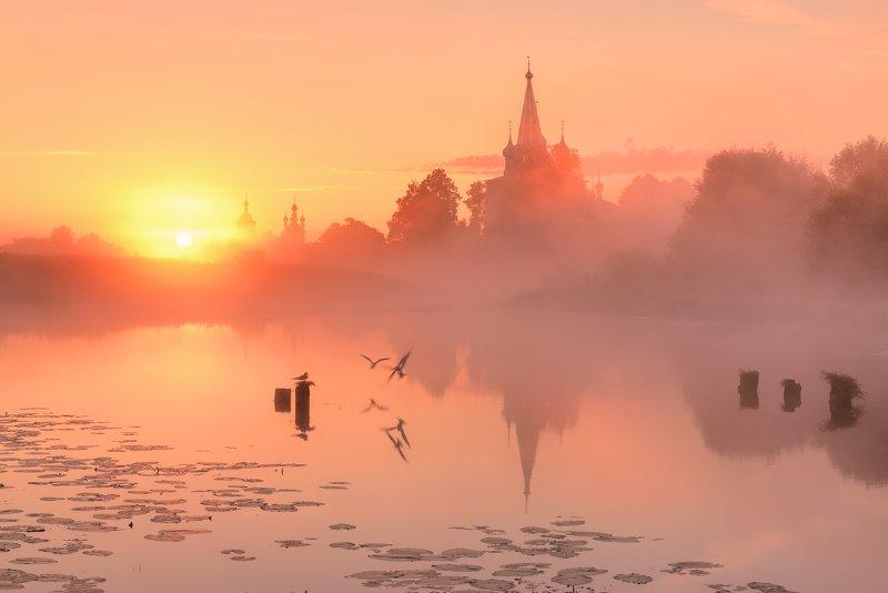 Утро в розовых тонах.... photo preview
