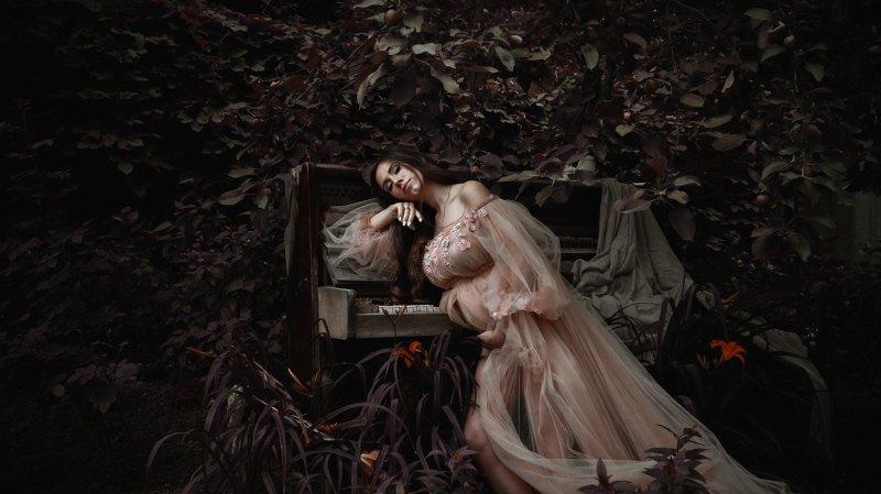Рояль в кустахphoto preview