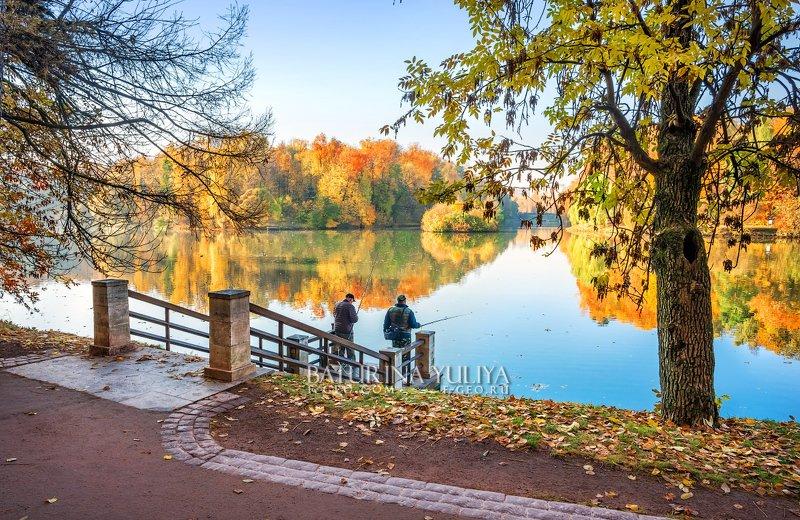 москва, царицыно, осень Рыбаки в Царицыноphoto preview