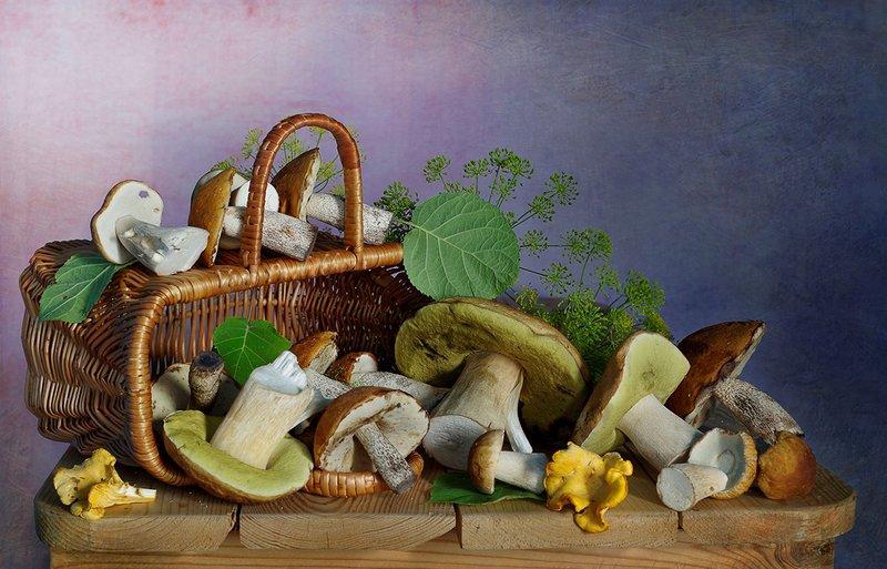 натюрморт,грибы,лето,вера павлухина, Грибная пора .photo preview