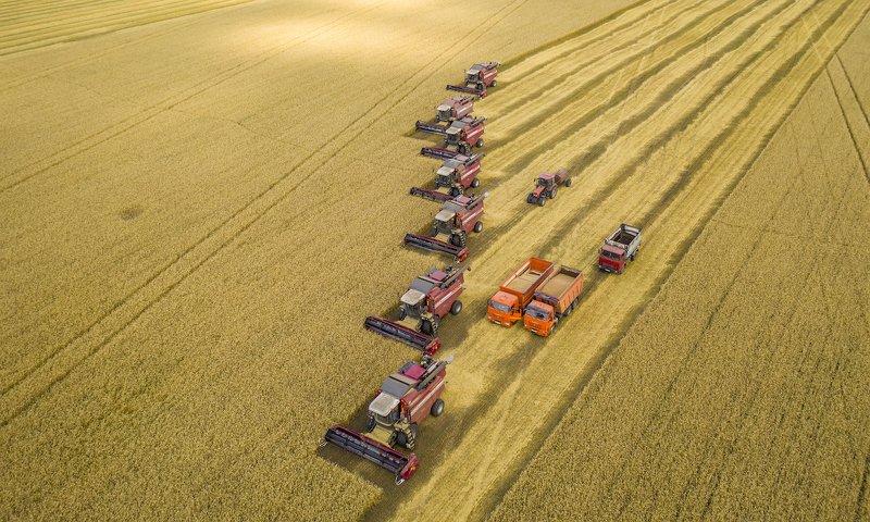 Битва за урожай2photo preview