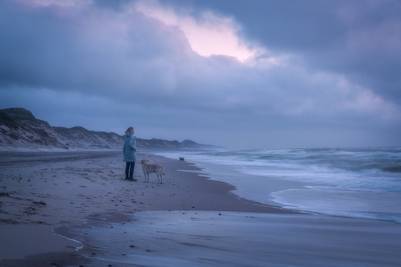 Beach, Blue, Blue Hour, Clouds, Denmark Sea, Dog, Dune, endless, Evening, Evening Mood, Horizon, Labrador, mist, Moody, NordJylland, North Sea, Ocean, outdoors, Sand, Sand dunes, Sea, seafront, Seashore, Shore, Skagen, Tidal waves, Tide, Walk, Walking, Wa Skagen Lightphoto preview