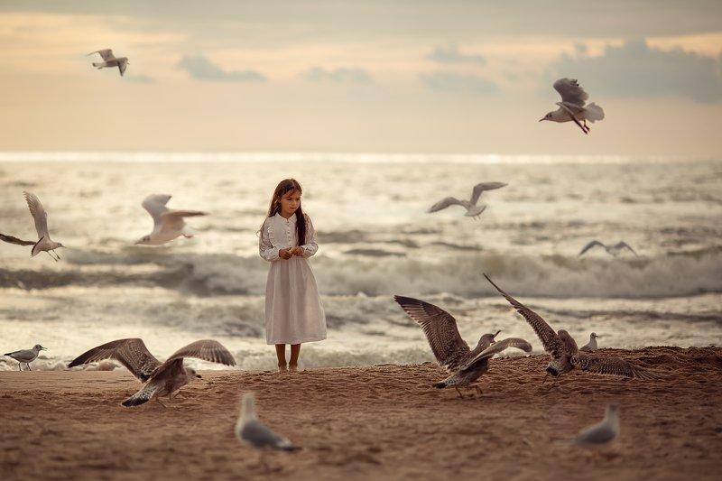 море, девочка, Паланга, чайки, волны, пляж, песок, вечер, закат У моряphoto preview