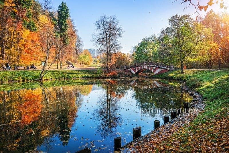 москва, царицыно, осень Полосатый мостикphoto preview