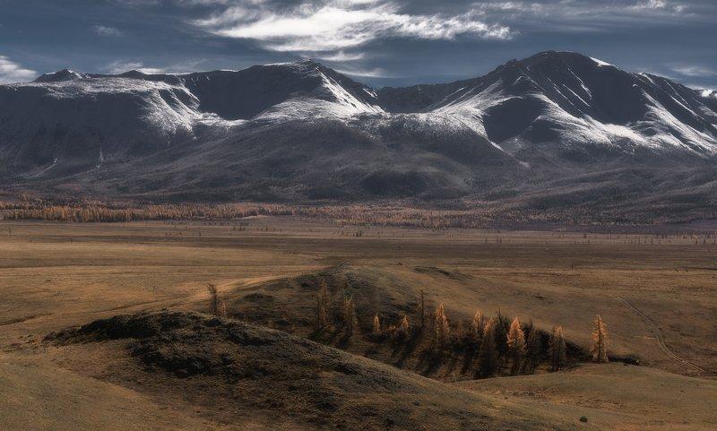 джангысколь,осень,горный алтай, курайская степь Где-то в Курайской степи...photo preview