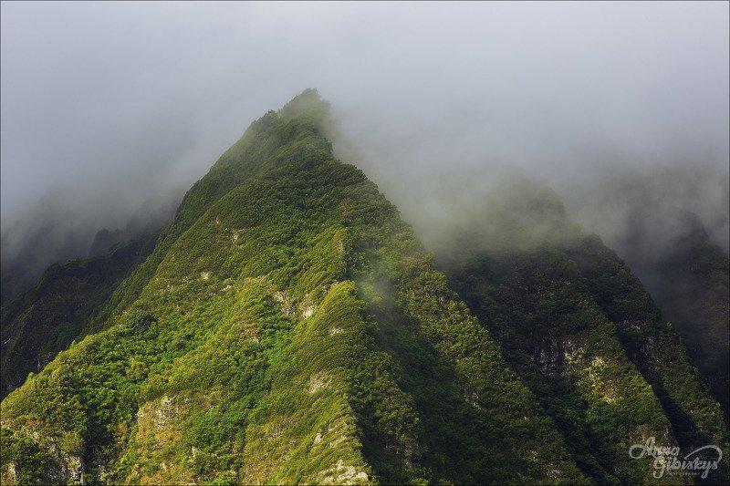 гавайи, оаху, остров, горы, фототур, пшишылны, сша. путешествие photo preview