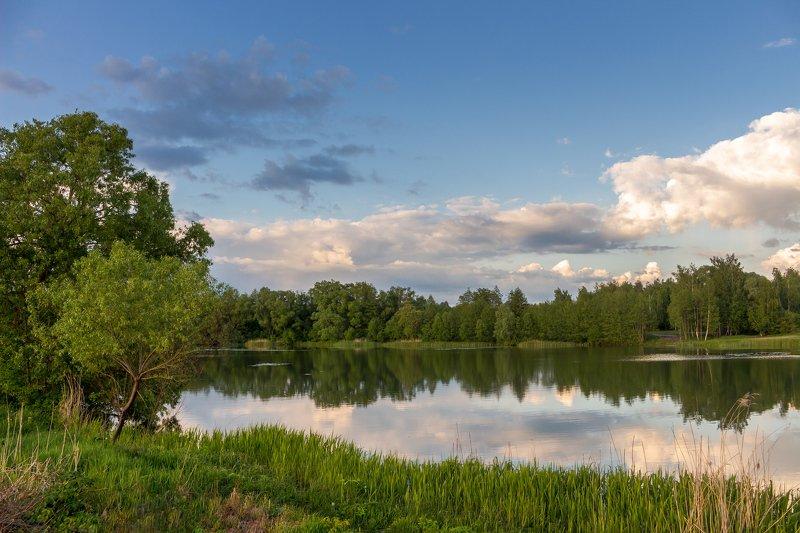 река, озеро, облака, лето, лес, вода photo preview