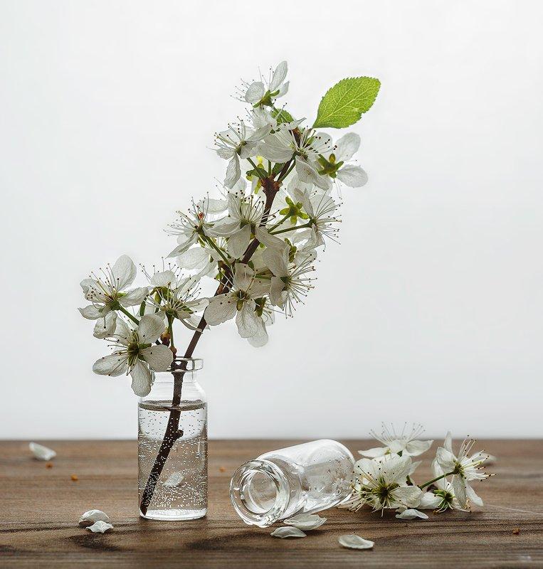 натюрморт пузырёк склянка веточка яблочный цветphoto preview