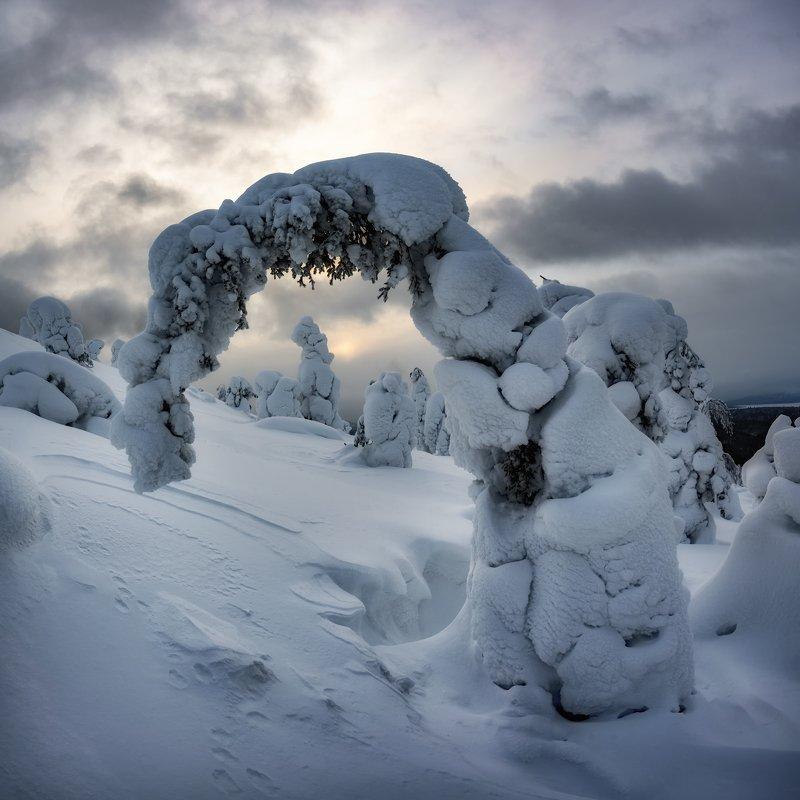 Во власти снегаphoto preview