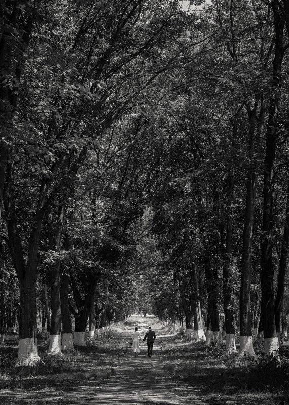 прогулка двух любящих сердецphoto preview