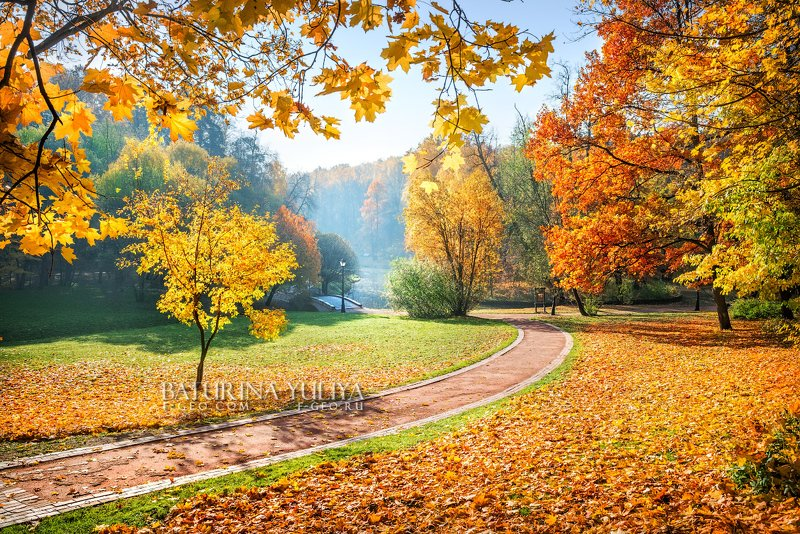 москва, царицыно, осень Осенняя дорожка в паркеphoto preview