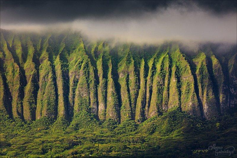 гавайи, оаху, остров, горы, фототур, пшишылны, путешествия, сша Лезвия photo preview