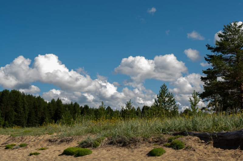 Облака над речкой Тамица.photo preview