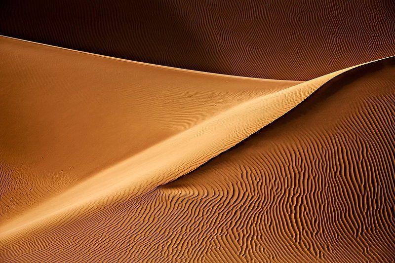 Golden Dustphoto preview