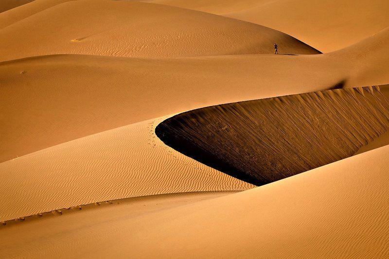 Walk in the desertsphoto preview
