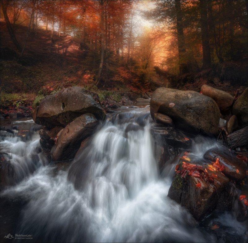 Карпаты, Закарпатье, Лумшоры, осень, река Туричка, Осень в Лумшорахphoto preview