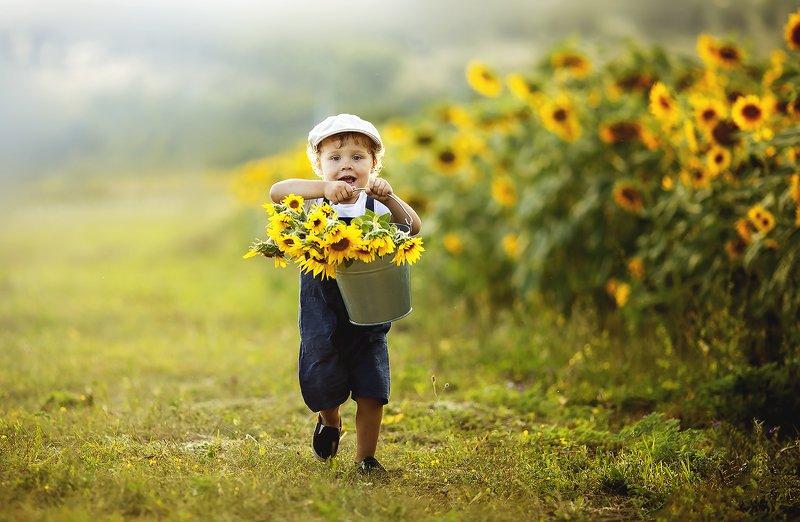 подсолнухи, ребенок, детский портрет, детский фотограф Так весело в подсолнухахphoto preview