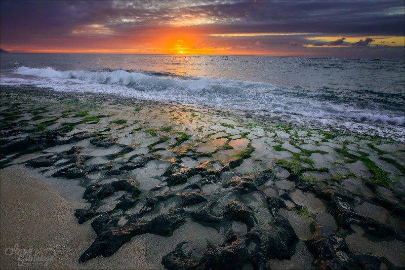 гавайи, оаху, остров, морской пейзаж, фототур, пшишылны, океан Черепаший пляжphoto preview