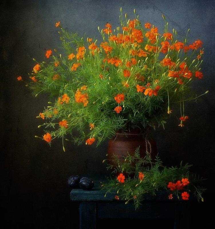 натюрморт,цветы,бархатцы с бархатцами...photo preview