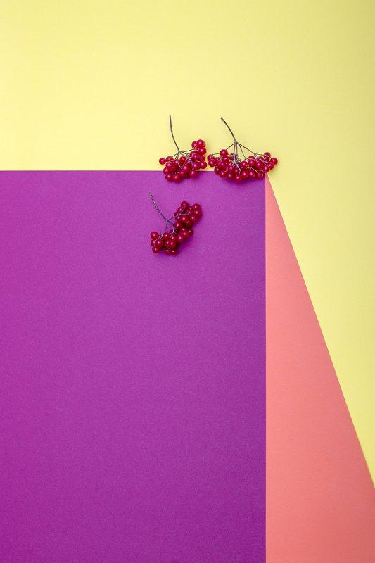 Геометрический натюрморт с калиной краснойphoto preview