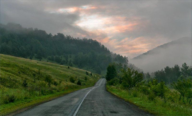 пейзаж туман дорога Навстречу светуphoto preview