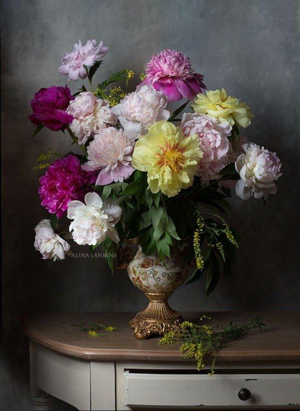 натюрморт, цветы, пионы, арт, алина ланкина, художественный натюрморт, натюрморт с цветами, лето, свет ***photo preview