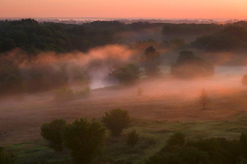 утро, рассвет, лето, туман, долина, свет, холмы, река, пейзаж, foggy, morning, misty, landscape, hills, valley, light, sunrise, summertime, fog, colors, river \