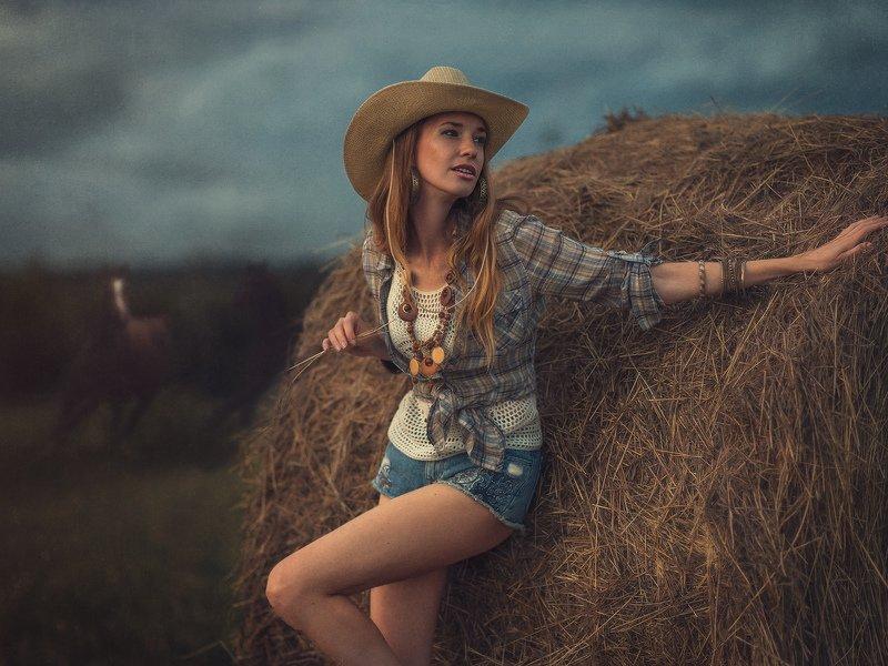 лошади, стог, солома, ковбой, шляпа Август. Поле.photo preview