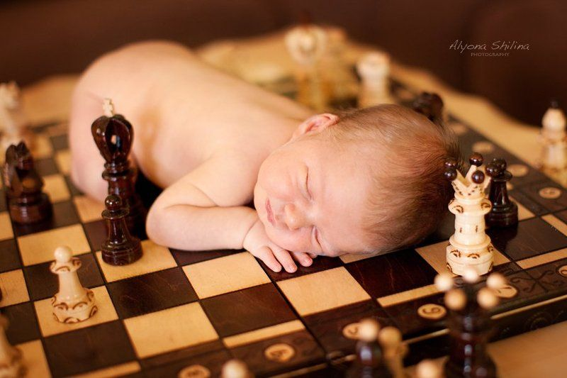 One week old chessmaster)photo preview