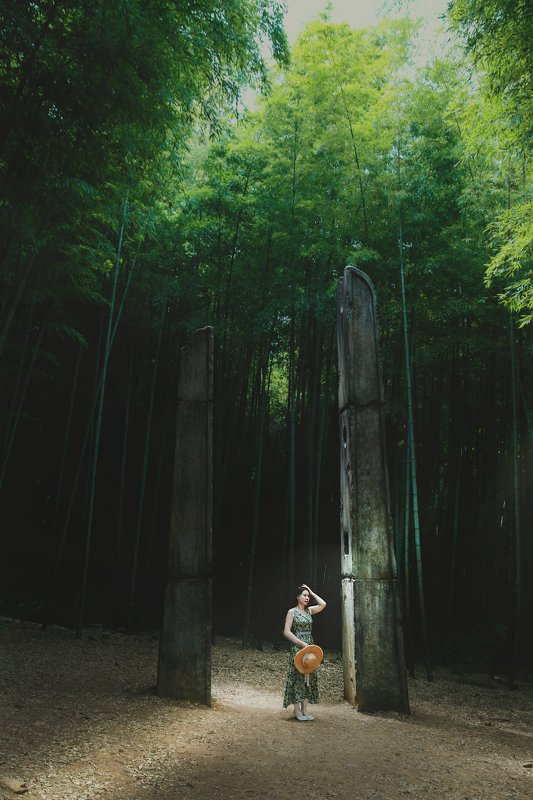 forestphoto preview