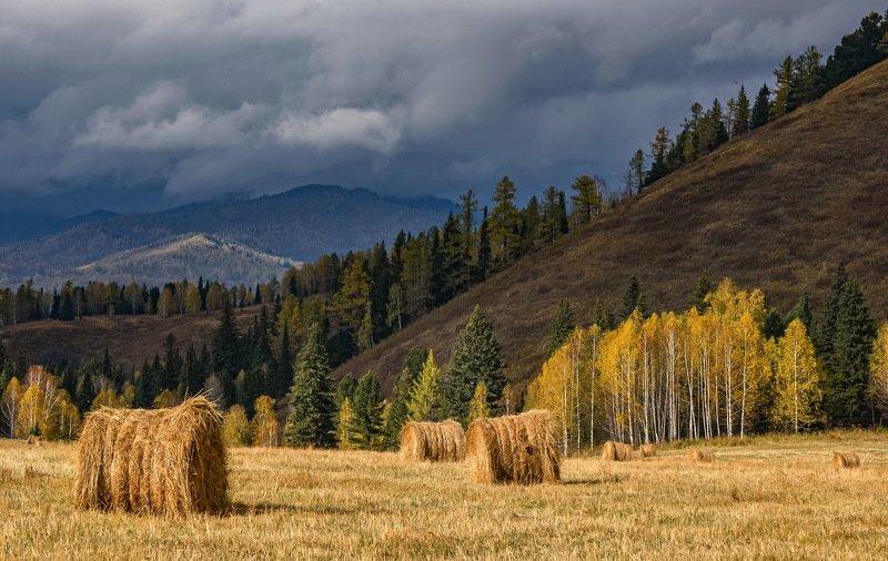 Осень на Алтае.photo preview