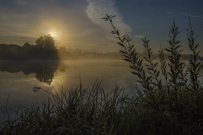 утро, туман, архангельское Просто уходило лето...photo preview