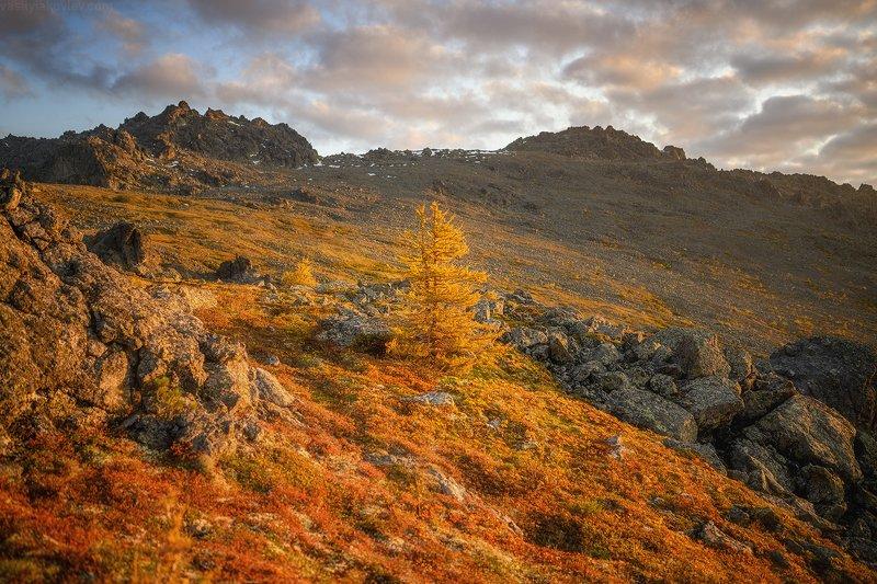 осень, фототур, яковлевфототур, василийяковлев, северный урал, урал Осенний пожарphoto preview
