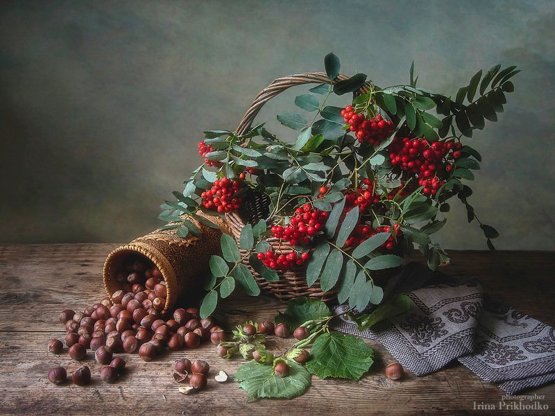 натюрморт, август, урожай, орехи, рябина, художественное фото Ореховый Спасphoto preview
