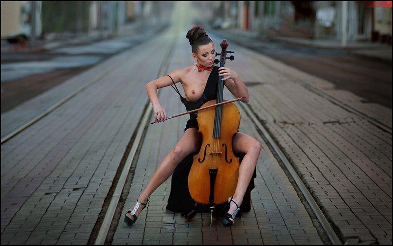 Solo For Cello ©photo preview
