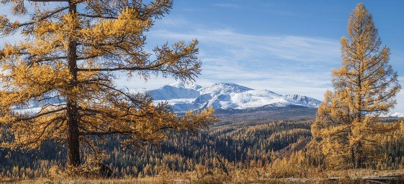 Где-то на Улаганском перевалеphoto preview