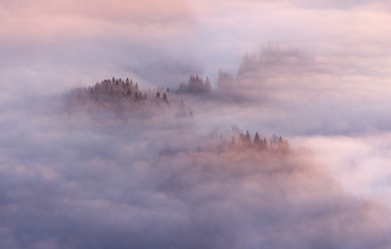winter, trees, fog, snow, landscape, travel, nature, mountain, romania, cold, morning Pure Morningphoto preview