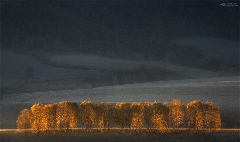 алтай, алтайский край, осень, фототур на алтай, россия, Осенний форпостphoto preview
